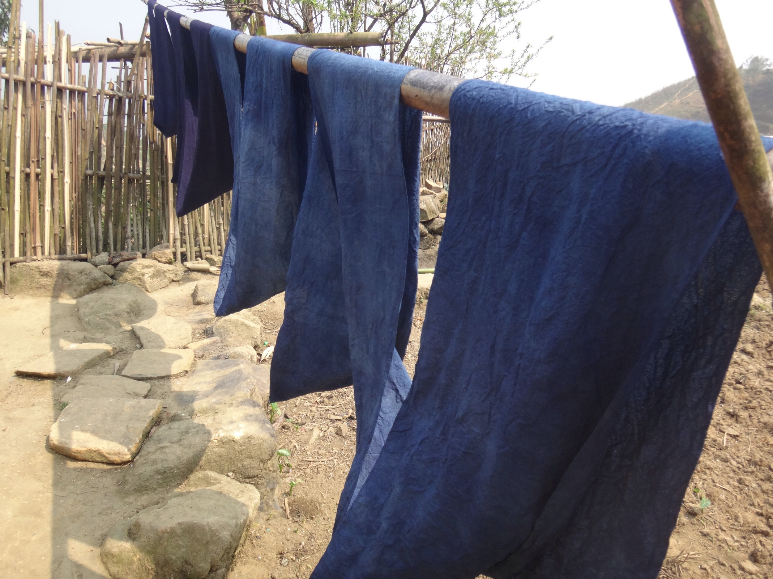 Dyed cloth drying.