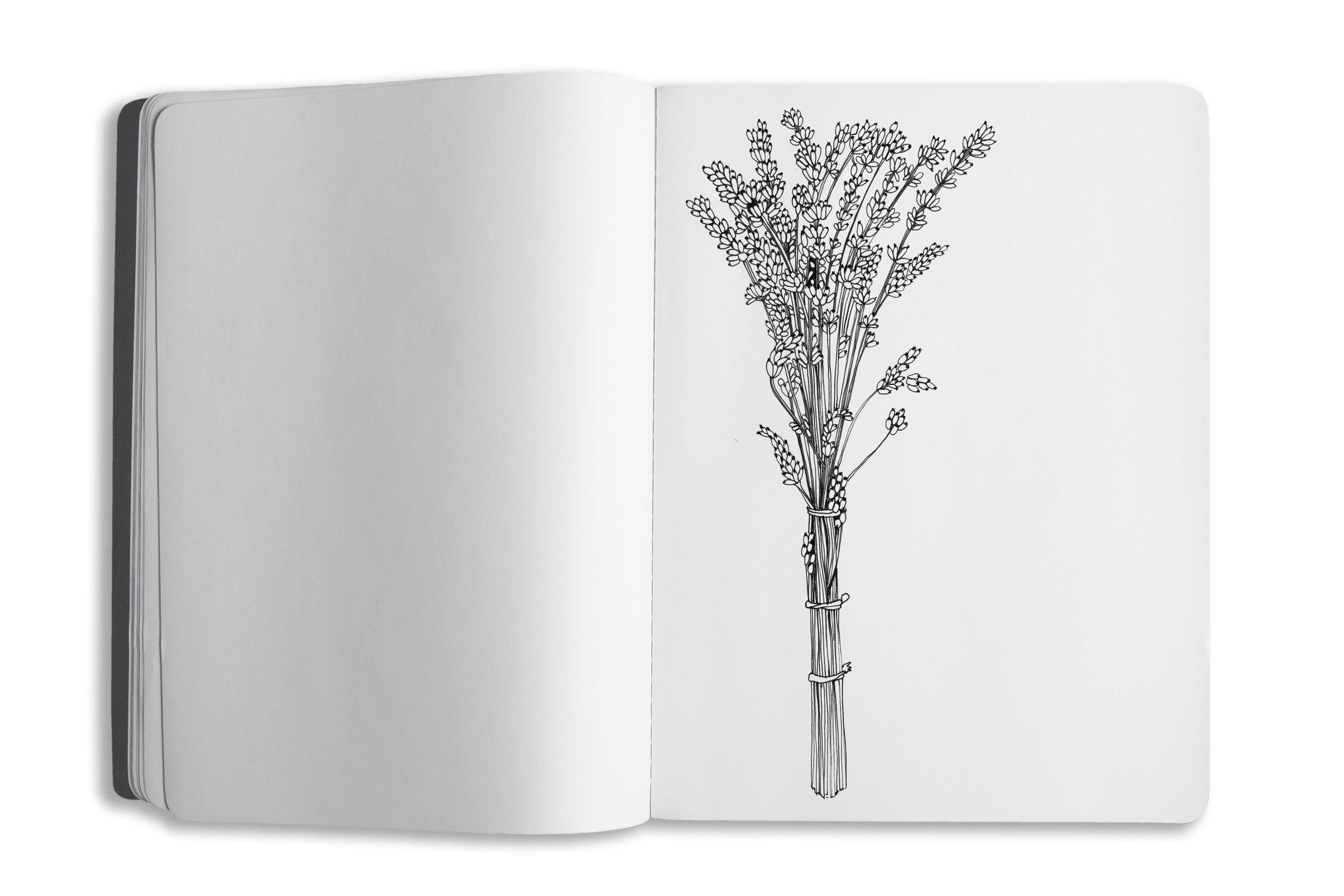 sketchbook-template-03-pg02.jpg