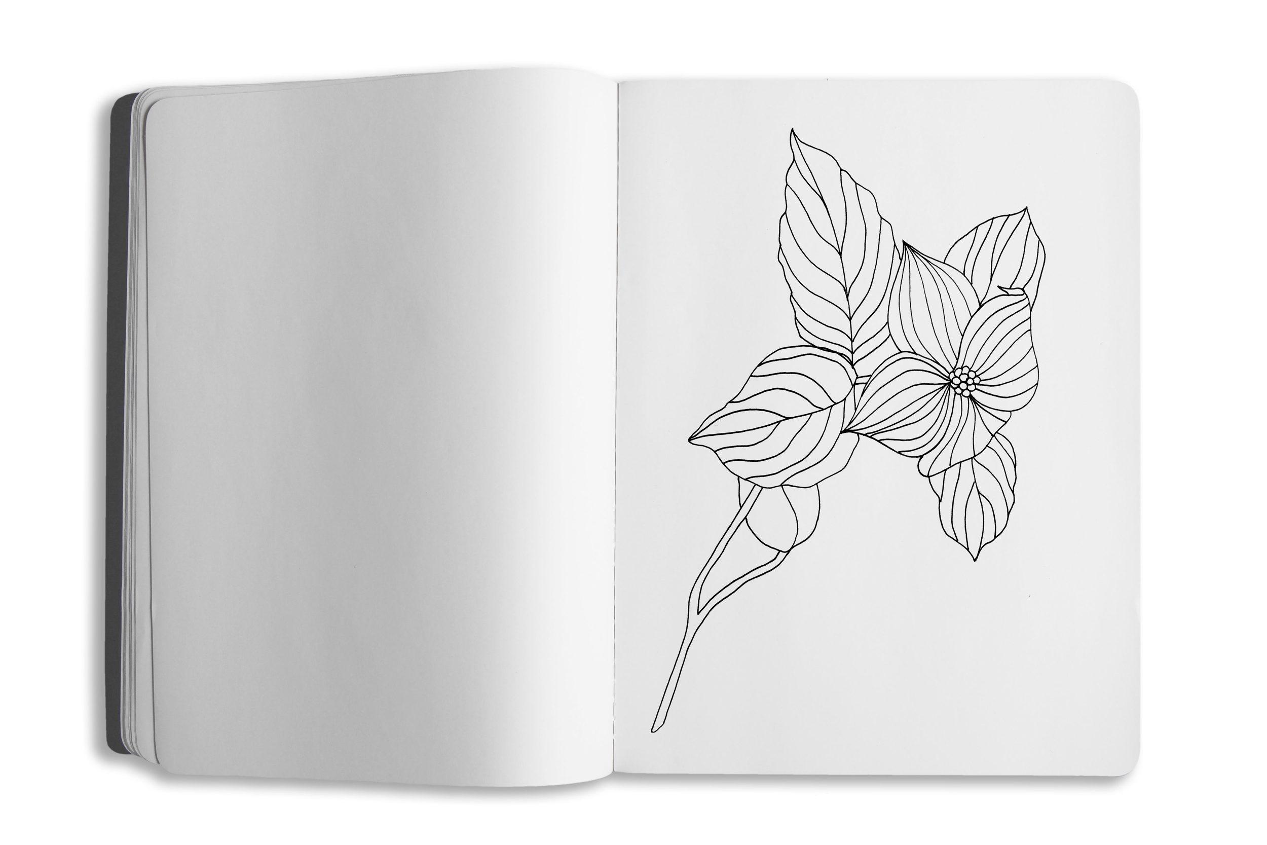sketchbook-template-03-pg04.jpg