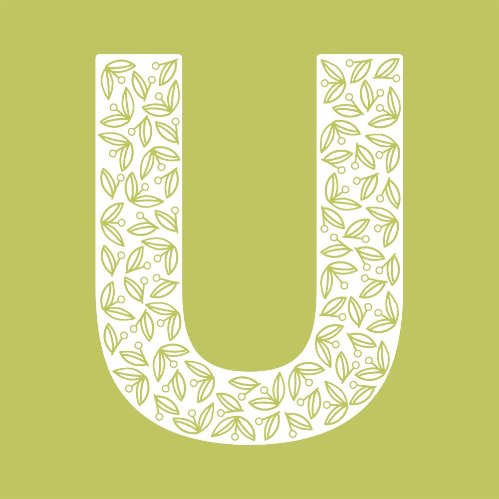 U-color.jpg