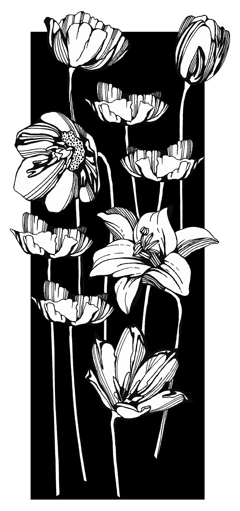 black&white_floral_02.jpg