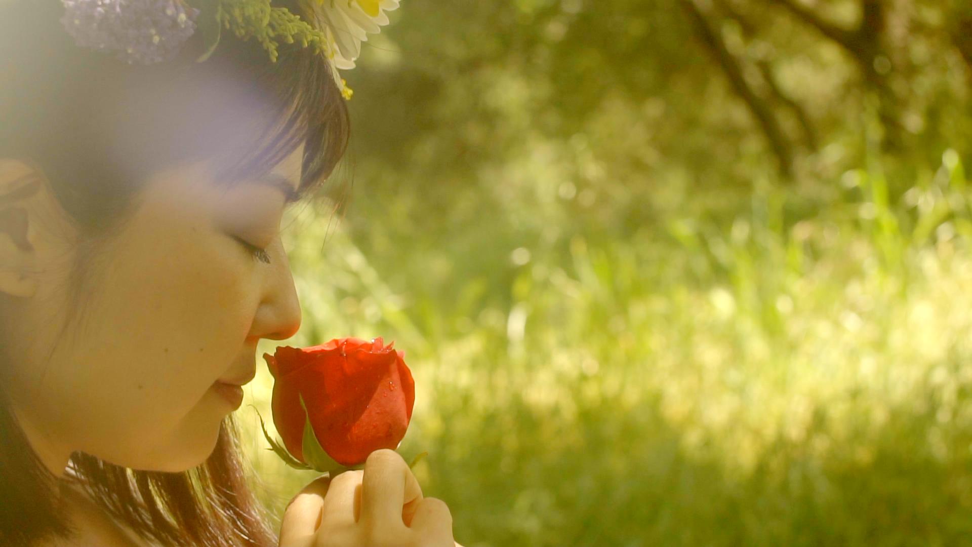 Rose Screenshot.png