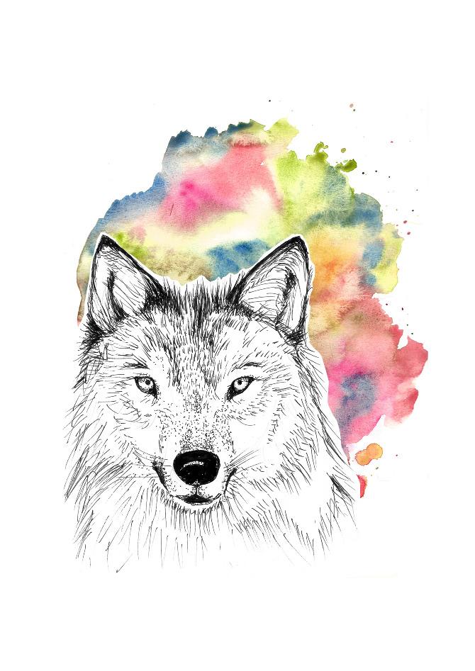 wolf_pauline_Sall.jpg