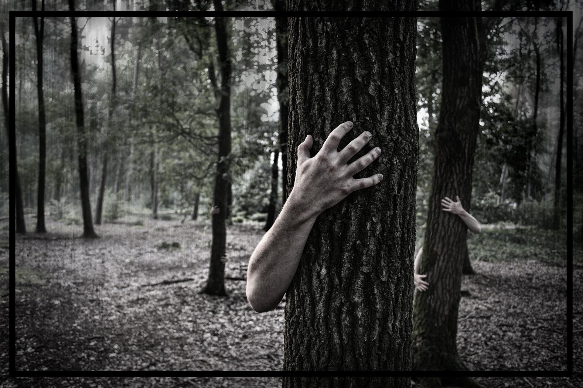 hiding in the trees.jpg
