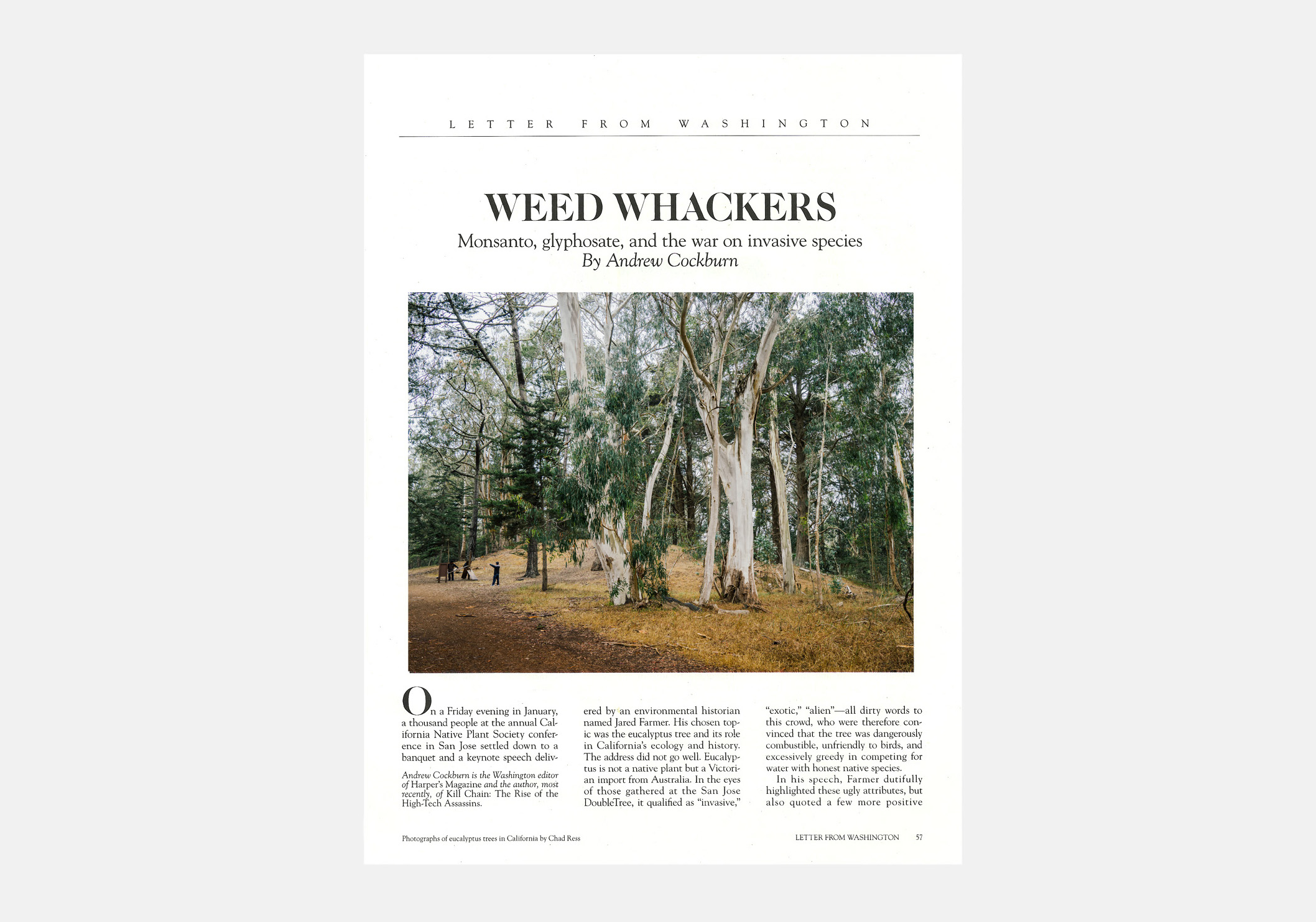 "<p><strong>Weed Whackers for Harper's Magazine</strong>____<a href=""/area-of-your-site"">Series of 3</a></p>"