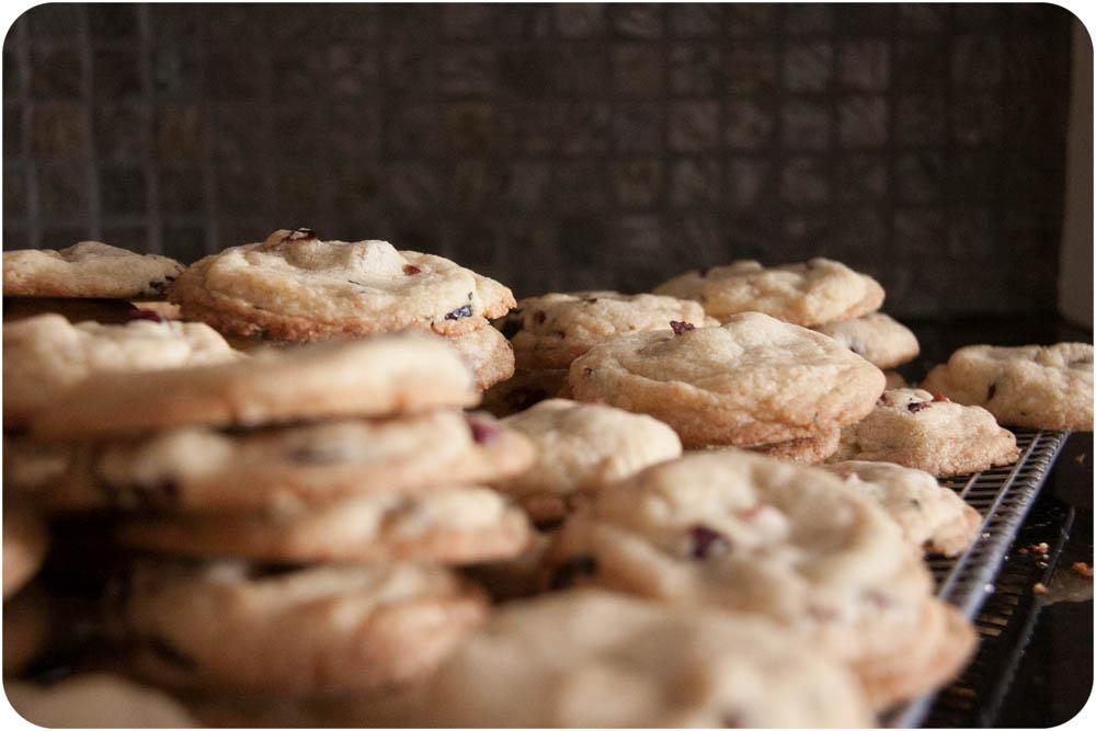 lemon + cranberry cookies
