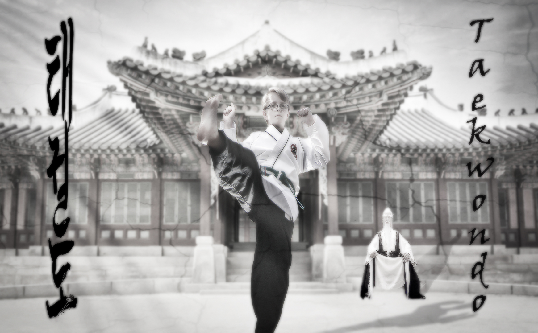 Zach.Taekwondo.CompositeLR.JPG