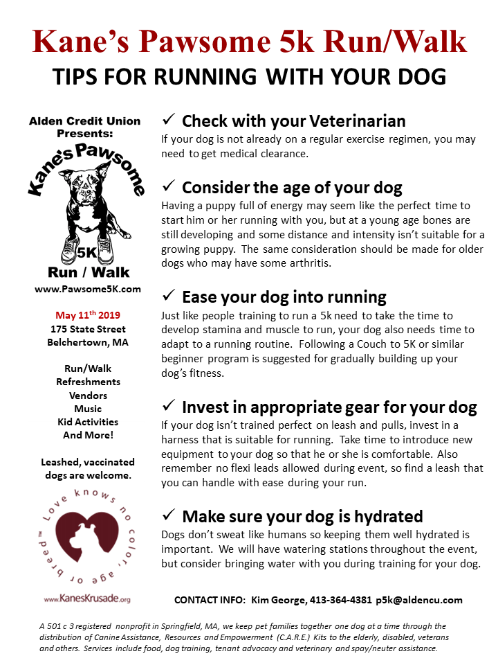 Kanes 5k Tips on Running with Your Dog.png