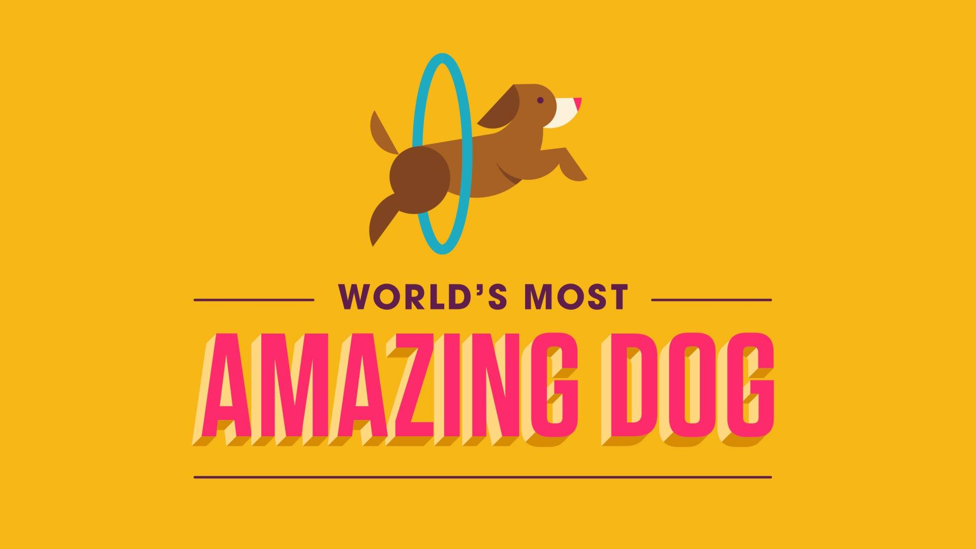 worlds-most-amazing-dog.jpg