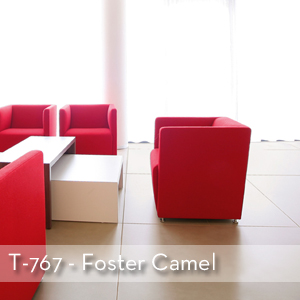 WHS Foster Camel.jpg