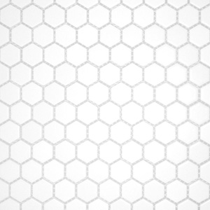 Hex White Matte 1 x 1