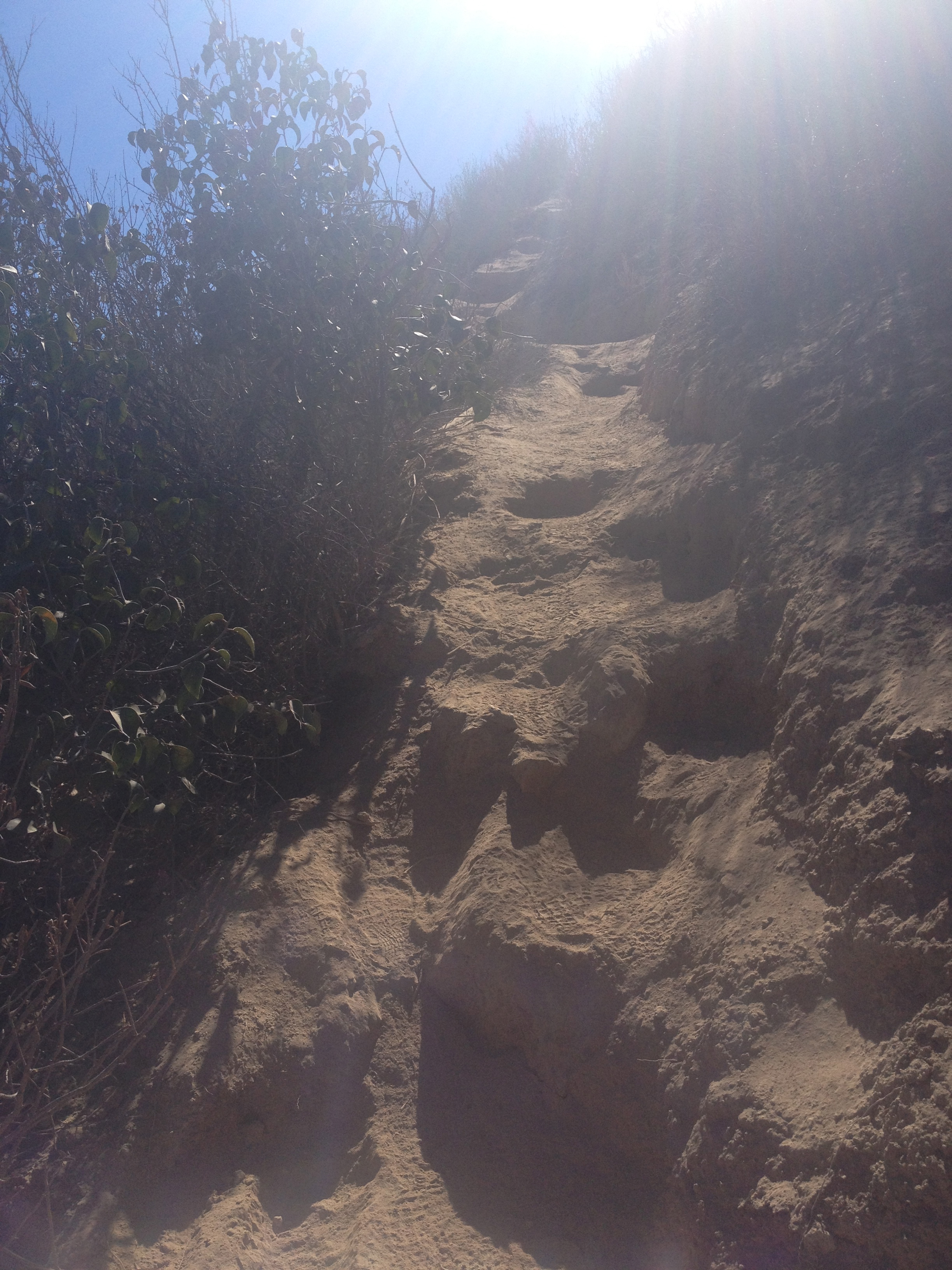 one of the trails that I did in the middle of the night (and in the heat)- super steep, super narrow. like mountain goats climbing.