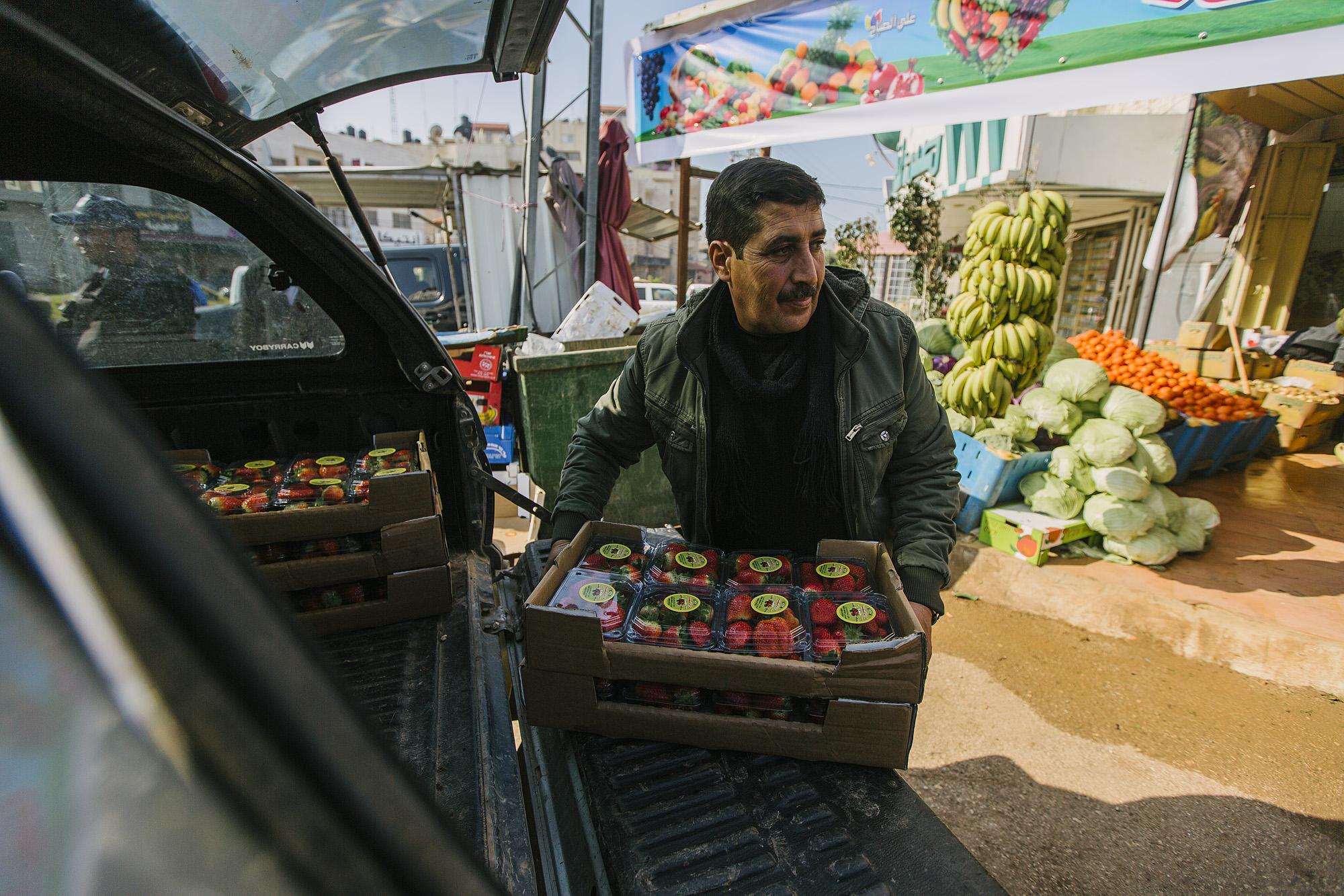 USAID-Israel-Day5-Strawberries-_07A8008.jpg