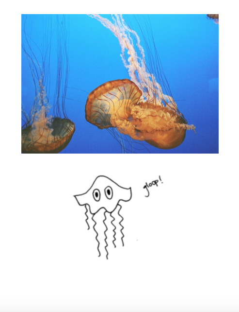 cali - jelly.png