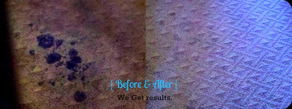 Actual photos of a C&R Carpet Customer