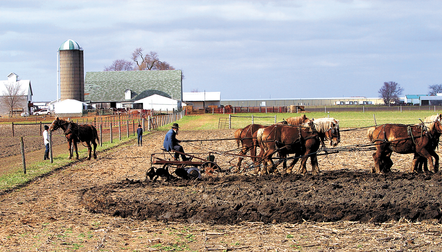 Spring plowing with Belgian draft horses makes the plain and simple life of peace, hard work and love of the soil, a scene of tranquility at an Amish farm nearArthur.Bill Hagen/The State Journal-Register