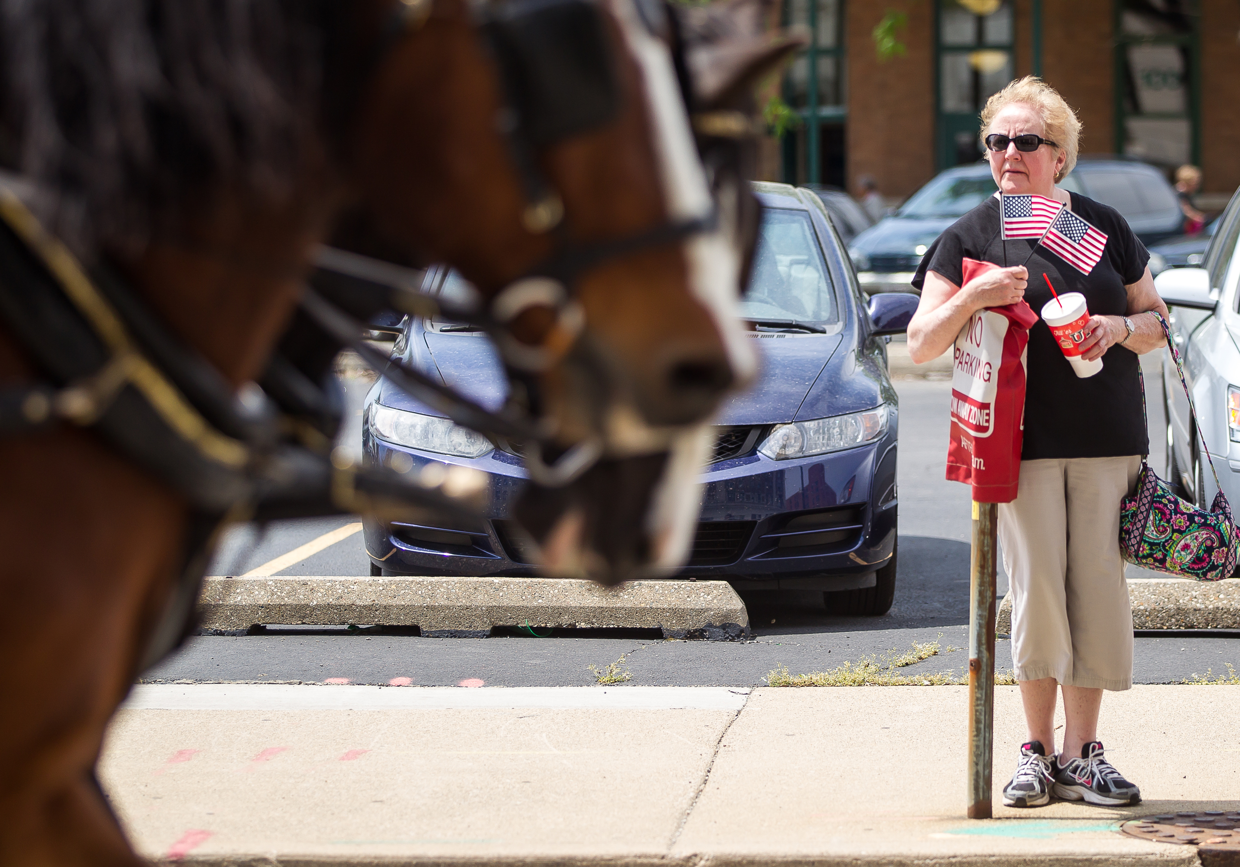 Ann Broch, of Greenview, Ill., watches the parade from Fourth Street as the horse drawn hearse passes by in the funeral procession during the 2015 Lincoln Funeral Re-enactment, Sunday, May 3, 2015, in Springfield, Ill. Justin L. Fowler/The State Journal-Register
