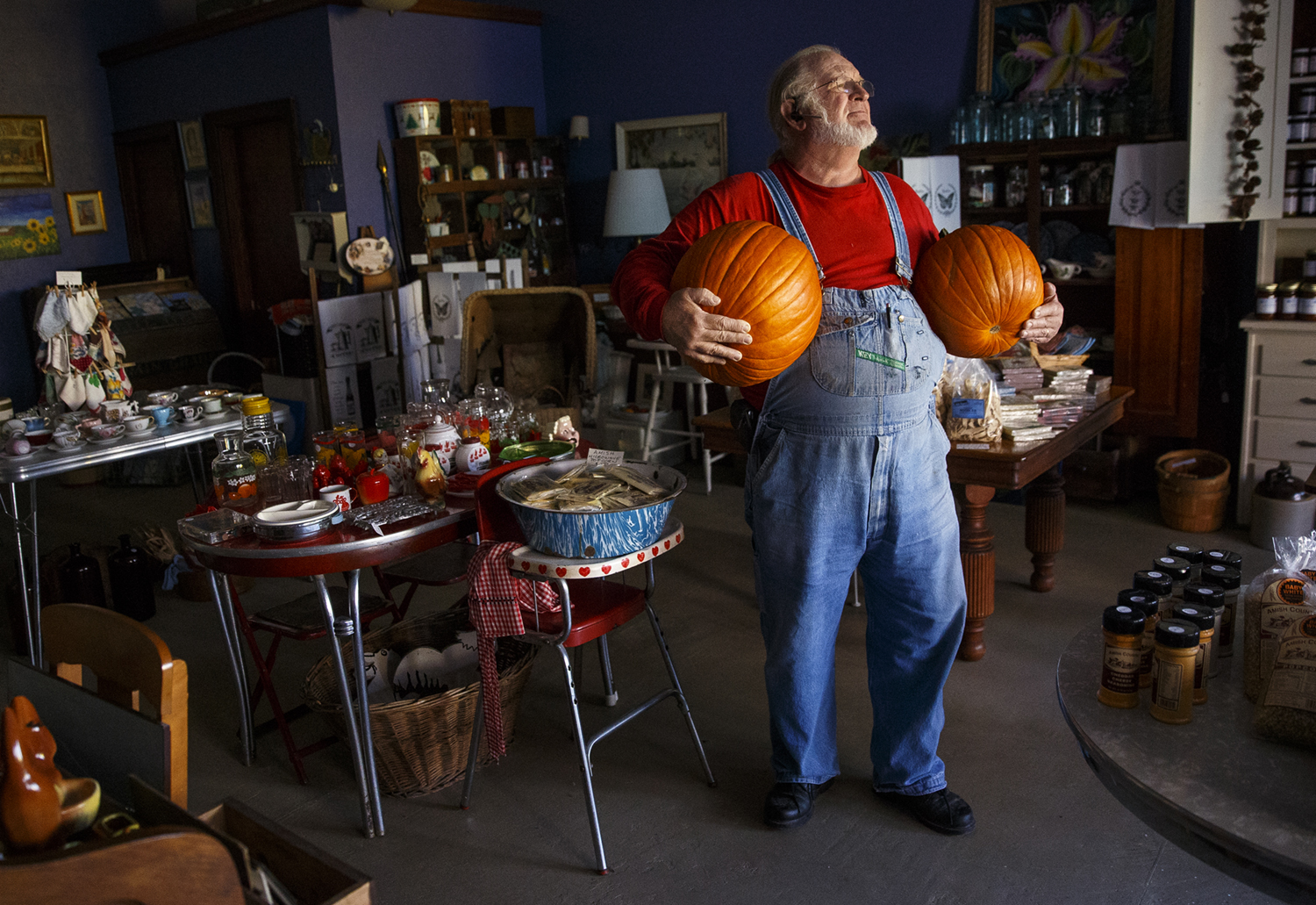 Peter Niehaus pauses as he carries two pumpkins to the front of The Little Fox in downtown Elkhart Tuesday, Oct. 6, 2015. Niehaus, who also operates the adjoining businesses The Wild Hare and Horsefeathers with his wife Andrea, spent the day decorating downtown in preparation for the upcoming Elkhart Fall Festival.    Ted Schurter/The State Journal-Register