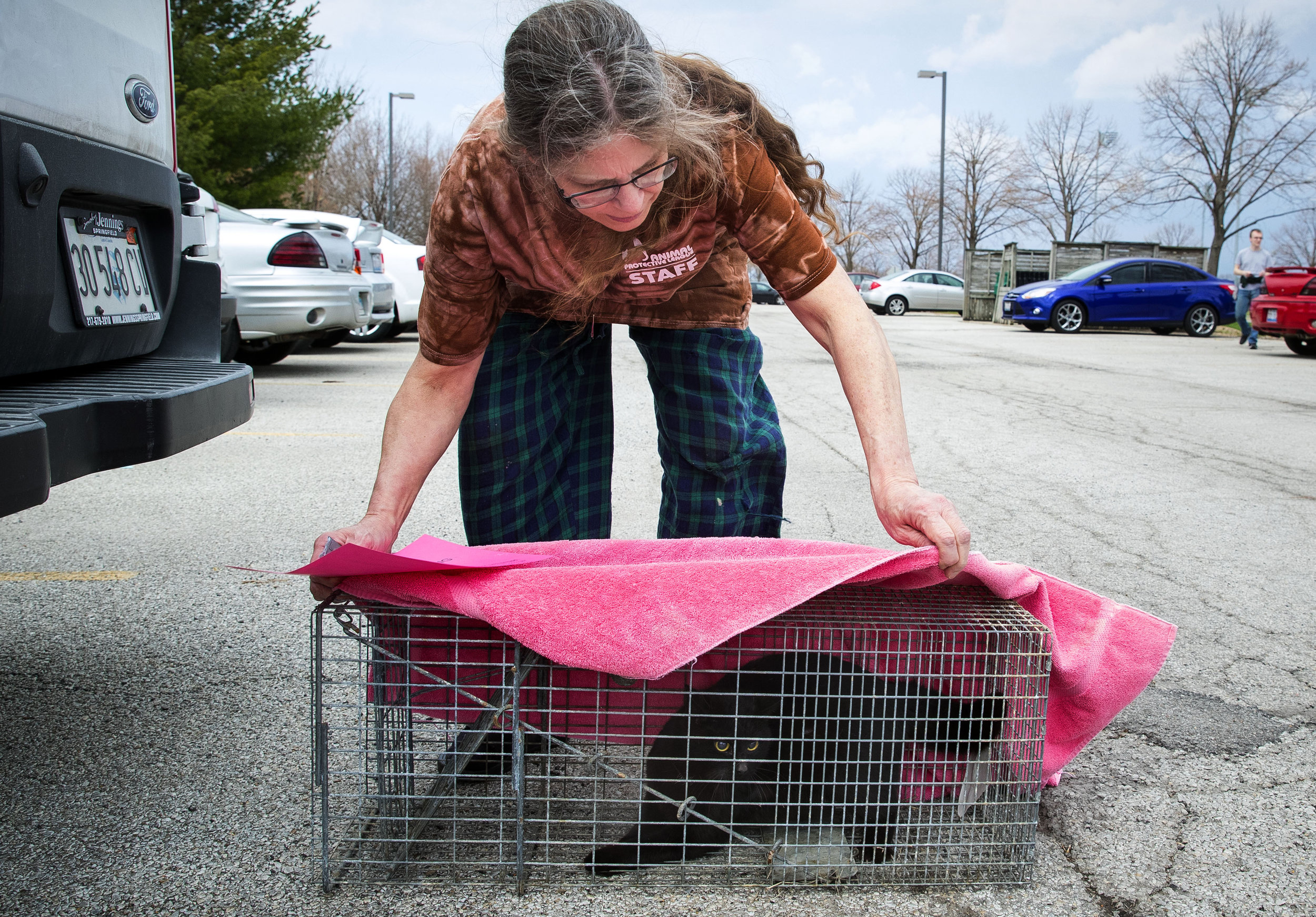 Teri Kidd prepares to load a feral cat into her van after trapping it on the campus of the University of Illinois Springfield Friday, April 13, 2018. The cat will be taken to Animal Protective League in Springfield where it will undergo a ovariohysterectomy and returned to the exact location where she was caught. In addition to the Trap-Neuter-Return program, APL also has a barn cat adoption program that offers feral cats that are brought to the shelter to owners of barns, garages, warehouses, and other settings better suited to unsocialized cats. [Ted Schurter/The State Journal-Register]