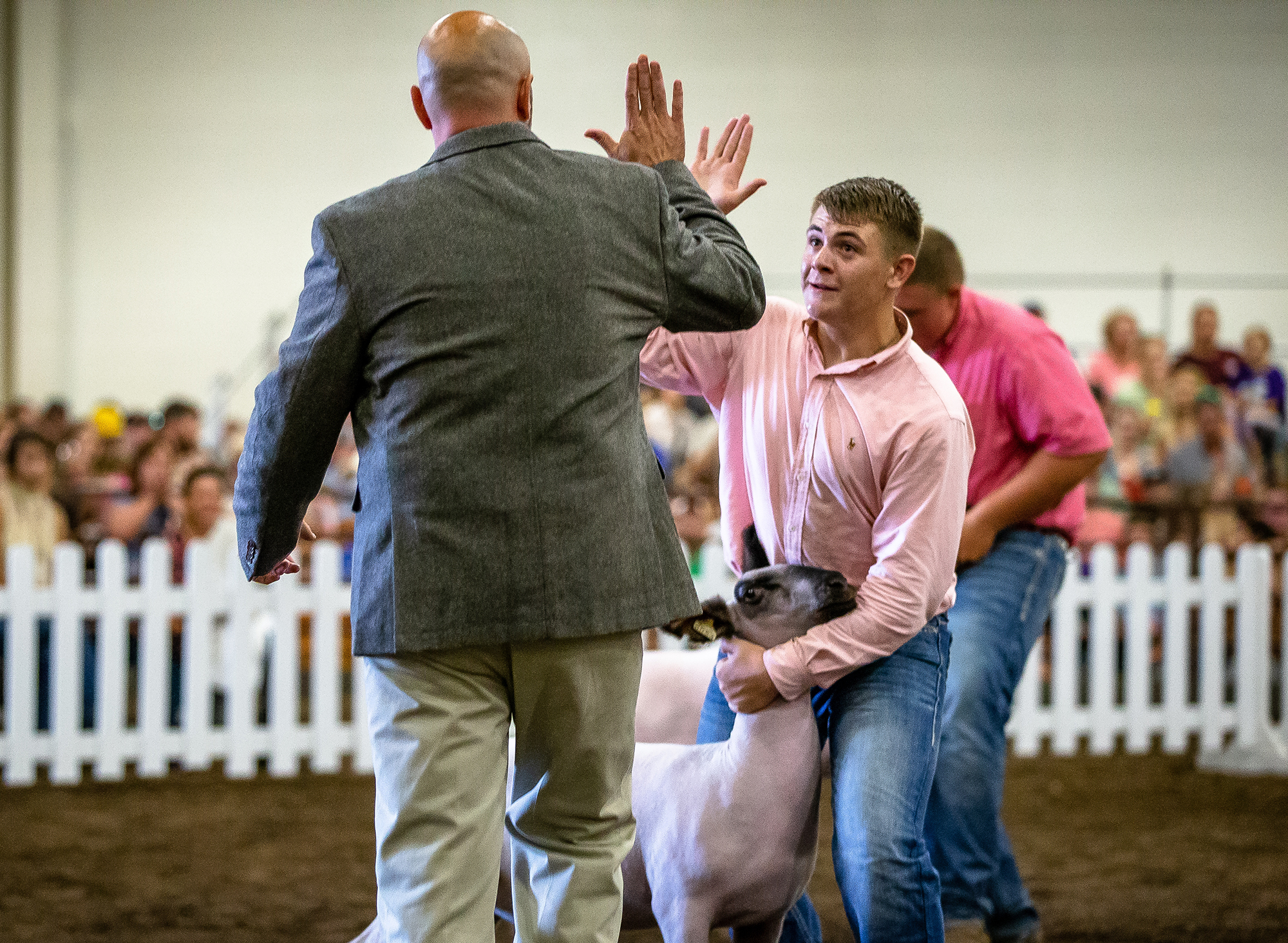 Bryce Clayton, of Winchester, Ill., is congratulated his wether is named Grand Champion during the Parade of Champions at the Livestock Center during the Illinois State Fair at the Illinois State Fairgrounds, Saturday, Aug. 11, 2018, in Springfield, Ill. [Justin L. Fowler/The State Journal-Register]