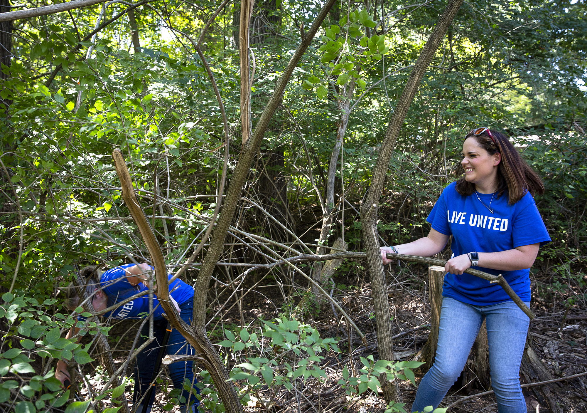 Valerie Watson tugs on a branch that had been cut by Rae Jones, left, during the United Way of Central Illinois's annual Day of Action Friday, Sept. 14, 2018 at Henson Robinson Zoo in Springfield, Ill. Watson and Jones, both employees of Blue Cross Blue Shield, were part of a group of 20 volunteers from BCBS and Wells Fargo who cleared brush from an area near the bear exhibit at the zoo. City-wide, nearly 250 volunteers lent a hand on 26 different service projects. [Rich Saal/The State Journal-Register]
