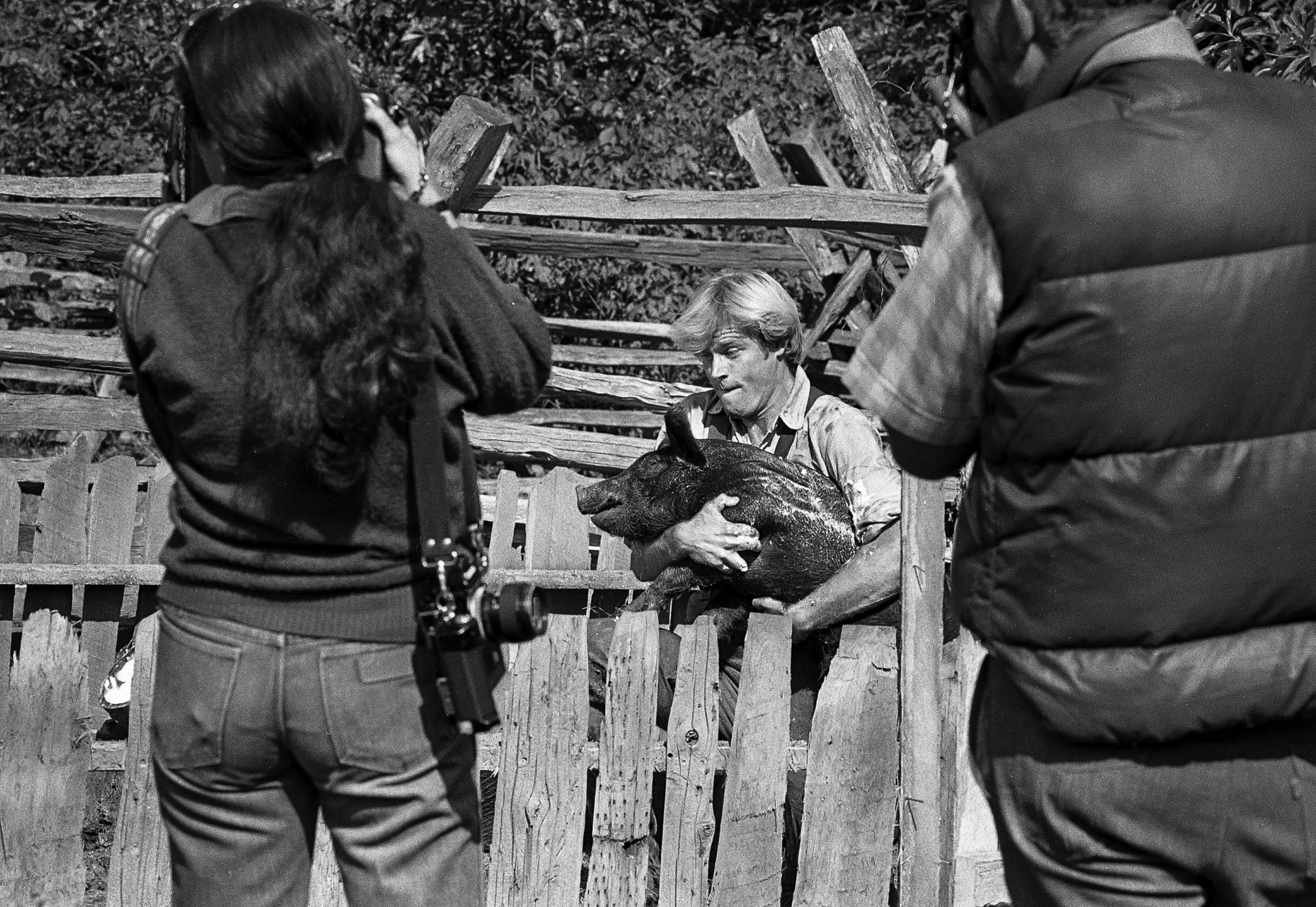 """Brian Kerwin, who plays Gideon Chisholm, wrestles with a pig during a scene for the television mini series """"The Chisholms,"""" filmed at New Salem State Historic Site, October 2, 1978. File/Bill Hagen/The State Journal-Register"""
