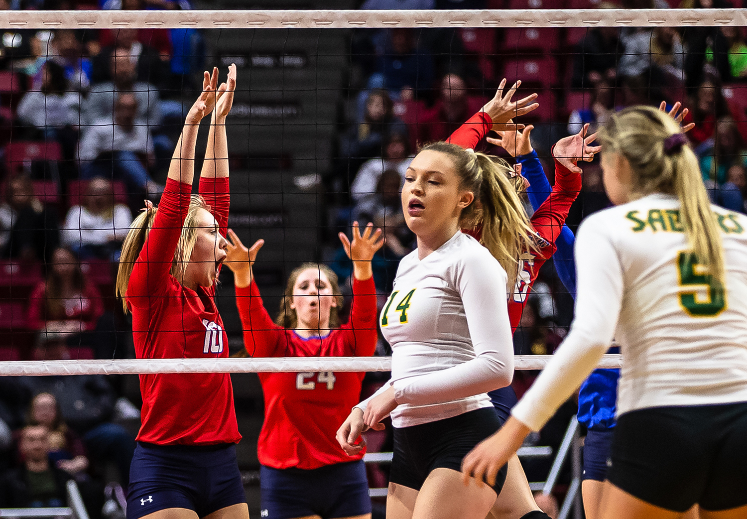 Pleasant Plains' Allie Edwards (10) celebrates a block against Champaign St. Thomas More during the Class 2A IHSA Volleyball State Final Tournament semifinals at Redbird Arena, Friday, Nov. 9, 2018, in Normal, Ill. [Justin L. Fowler/The State Journal-Register]