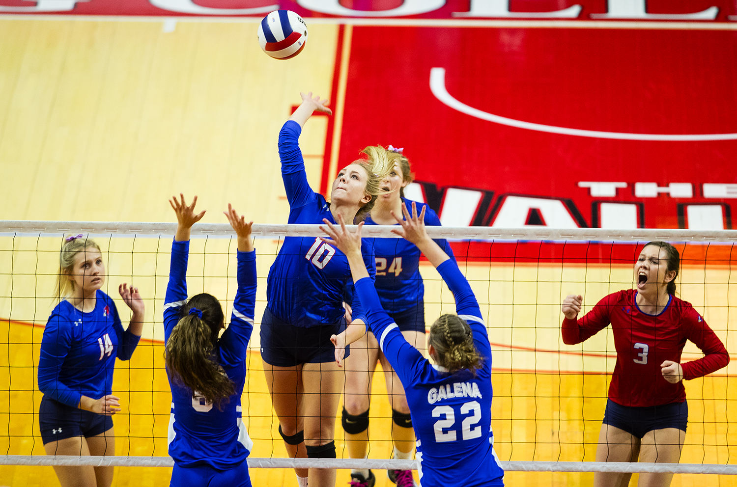 Pleasant Plains' Allie Edwards spikes the ball against Galena during the IHSA Class 2A Volleyball championship at Redbird Arena in Normal Saturday, Nov. 10, 2018. [Ted Schurter/The State Journal-Register]