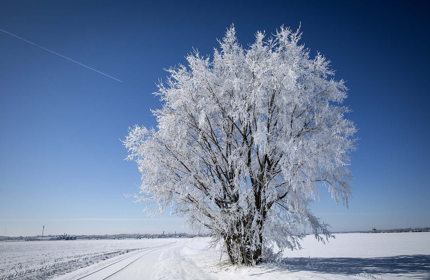 A snow-coated landscape stands in stark contrast to a blue sky near Williamsville, Ill. Monday, April 2, 2018, a day after a swath of winter weather left 6- 8 inches of snow across a portion of central Illinois. [Rich Saal/The State Journal-Register]