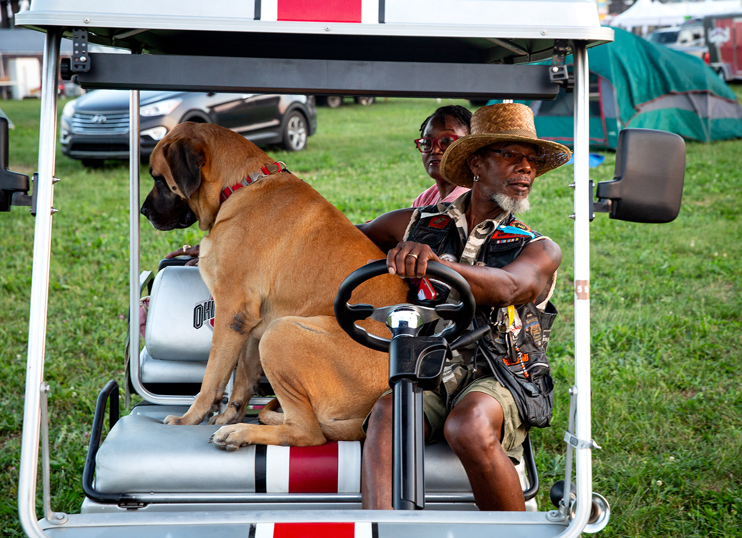Dan Coleman drives and Sheba, a English Mastif, shares the front seat while Coleman's wife, Renessa, takes a spot on the back of their golf cart at the National Bikers Roundup Wednesday, Aug. 1, 2018 Illinois State Fairgrounds in Springfield, Ill. The Coleman's are from Columbus, Ohio.[Rich Saal/The State Journal-Register]