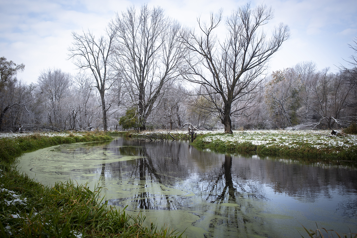 Polecat Creek near Lake Springfield flows through a snow-speckled landscape Friday, Nov. 9, 2018, in Springfield, Ill. [Rich Saal/The State Journal-Register]