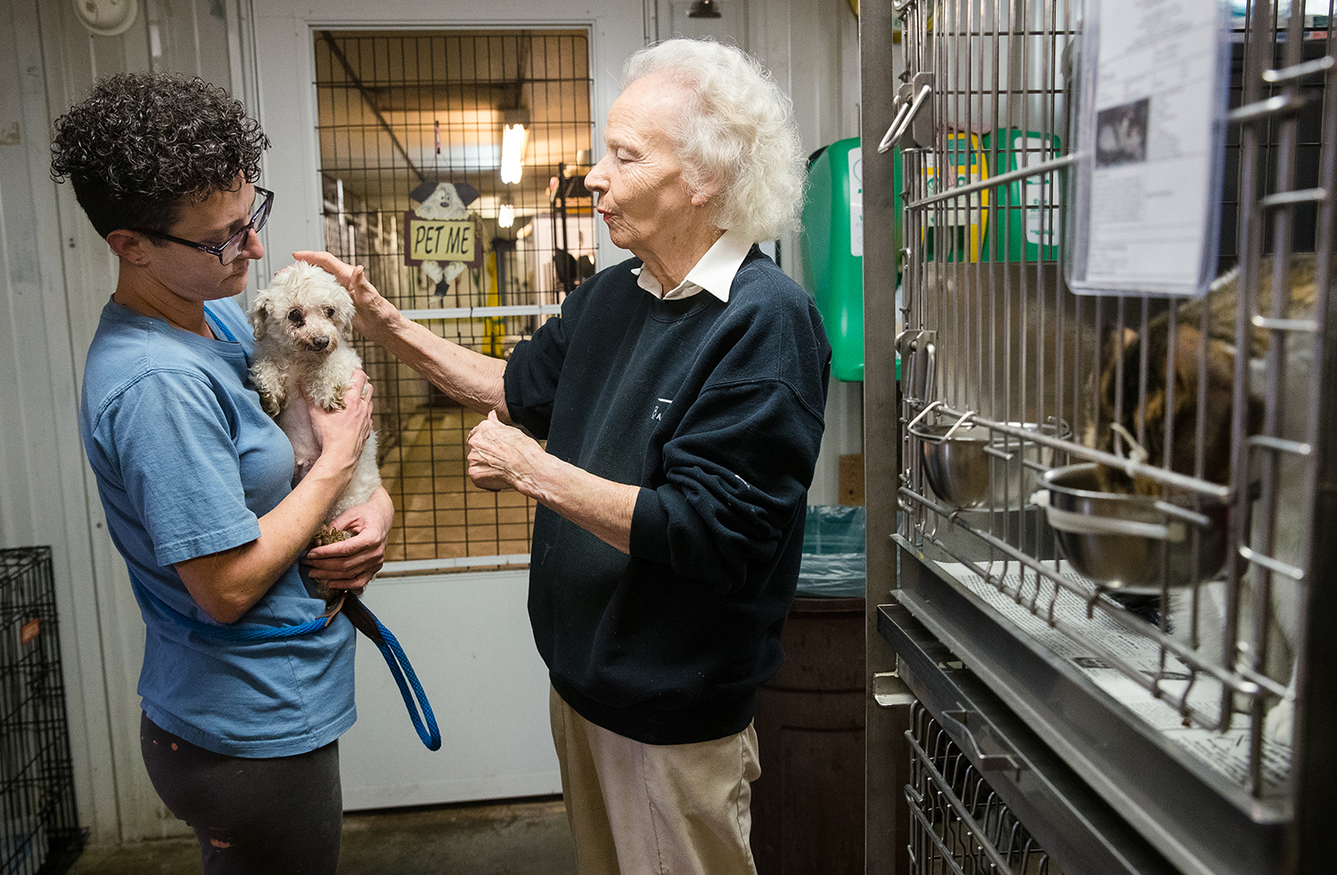 Renee Doty holds Zaney, an eight-year-old Maltese who had all her teeth removed and may need a complete mastectomy as Founder and Benld Adopt-A-Pet Shelter Director Lorraine Jackson pets her head Monday, Feb. 4, 2019. The dog is one of 19 the shelter accepted from an Illinois puppy mill that closed. [Ted Schurter/The State Journal-Register]