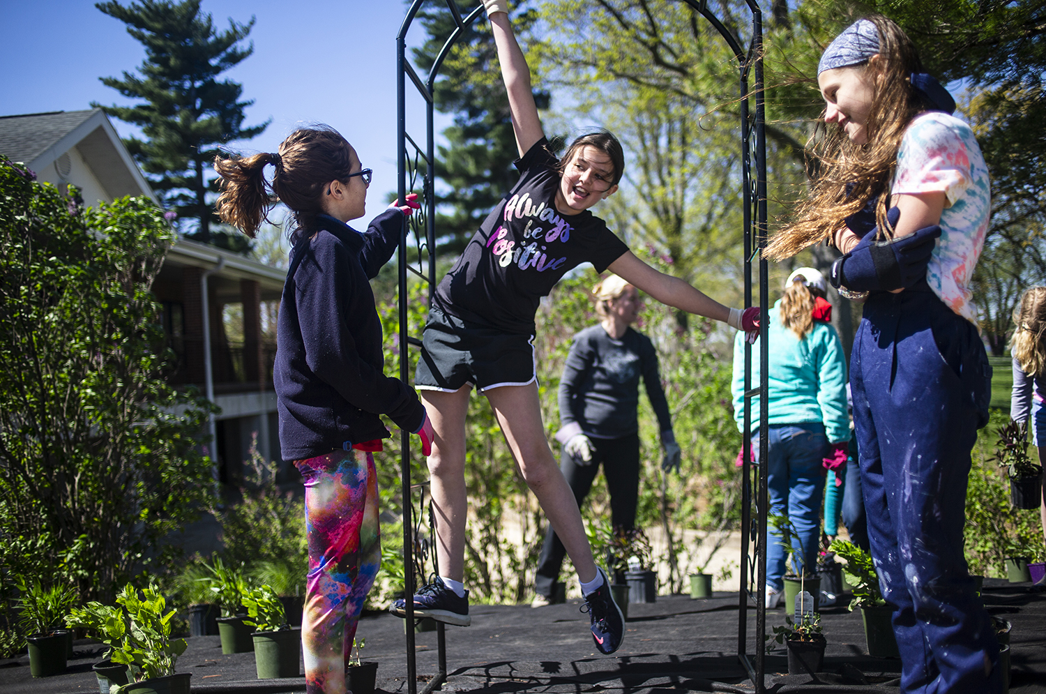 Sarah Triphahn, 11, of Girl Scout Troop 6307 from Blessed Sacrament School, climbs up an arbor while she and her fellow Girl Scouts install a monarch butterfly habitat at Lincoln Greens Golf Course, Friday, April 26, 2019, in Springfield, Ill. The habitat was for the Girl Scouts' Silver Award project that they began in August of 2018. They met with Buckley's Prairie Landscaping and worked out a design that featured native Illinois plants that would benefit the monarch butterfly including milkweed and goldenrod. The project was paid for by the Illinois Schoolyard Habitat Action Grant the group won from the Illinois Department of Natural Resources. [Justin L. Fowler/The State Journal-Register]