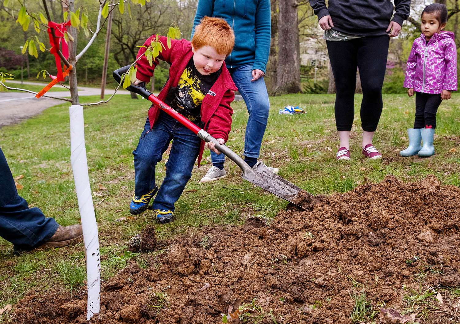Zack Stark leans onto his shovel to help his classmates at Washington Park Pre-School plant a chinkapin oak sapling at Washington Park Monday, April 29, 2019. The class activity was one of many tree planting events hosted by the Springfield Park District during Earth Awareness Week. [Ted Schurter/The State Journal-Register]