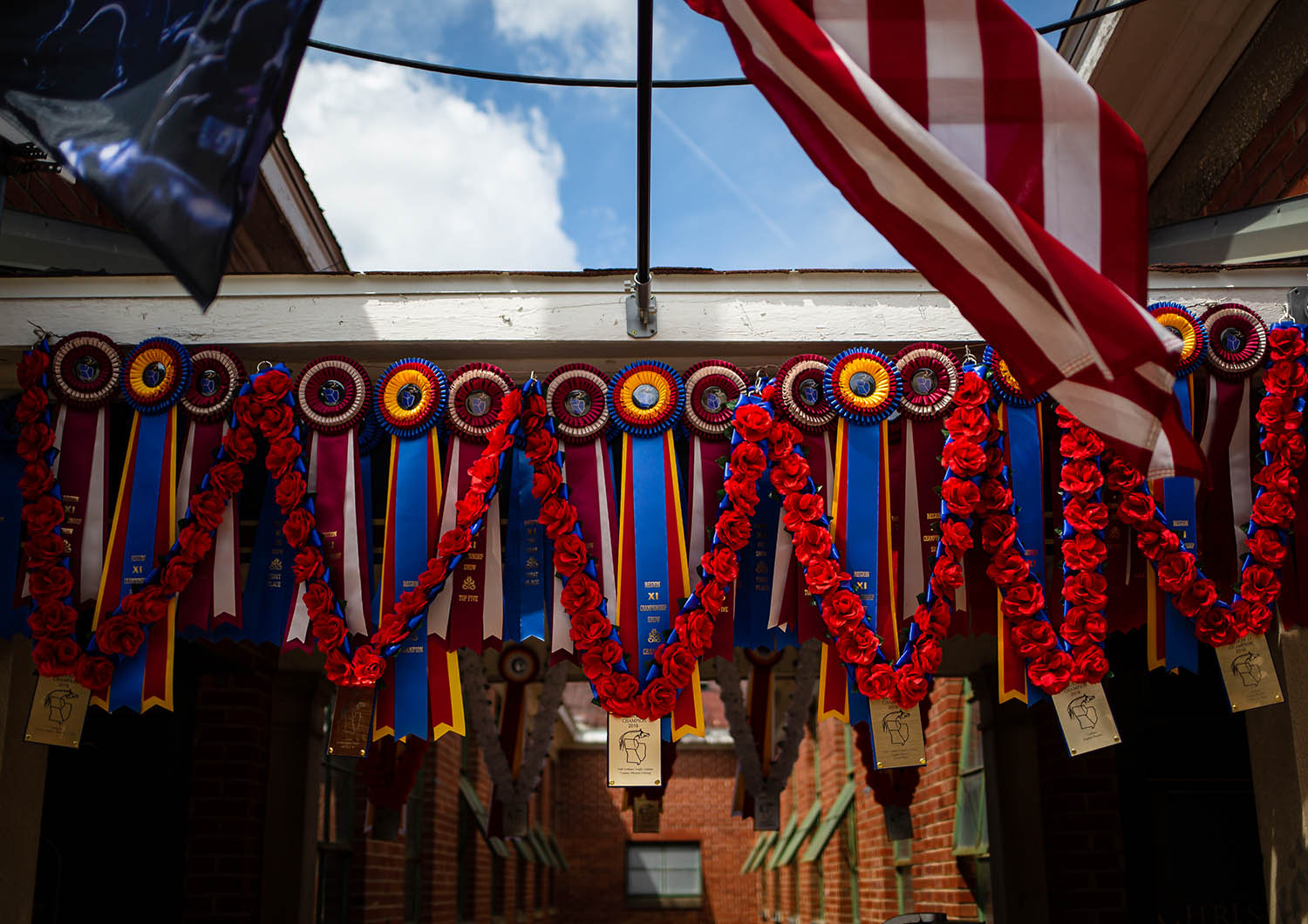 Awards for ChriShan Park Arabians hang along the horse barns during the Arabian Horse Association's Region 11 Championships at the Illinois State Fairgrounds, Saturday, July 6, 2019, in Springfield, Ill. [Justin L. Fowler/The State Journal-Register]