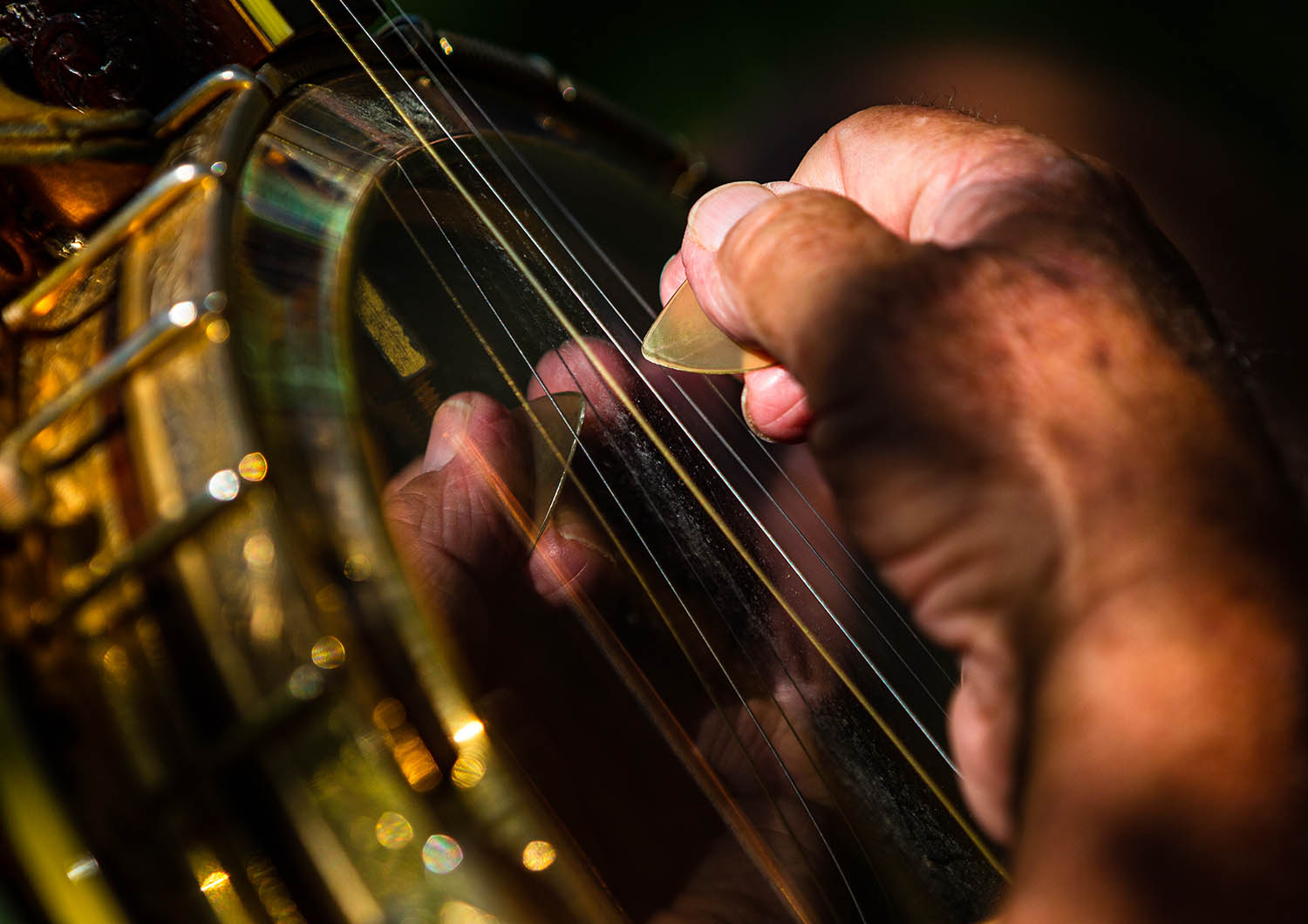 Phil Kuhl, of Morton, Ill., plucks the strings on his plectrum banjo from the 1970s as he performs with The All Frets Flash Mob on the lawn of the Old State Capitol, Friday, July 12, 2019, in Springfield, Ill. The All Frets Flash Mob are part of a group of banjo players that have congregated in Springfield for the All Frets Convention hosted by the Central Illinois Banjo Club at the Crowne Plaza. The convention, which is dedicated to music played on banjos, ukuleles, mandolins, guitars and other fretted instruments, concludes on Saturday with a concert at the Crowne Plaza starting at 7 p.m. [Justin L. Fowler/The State Journal-Register]