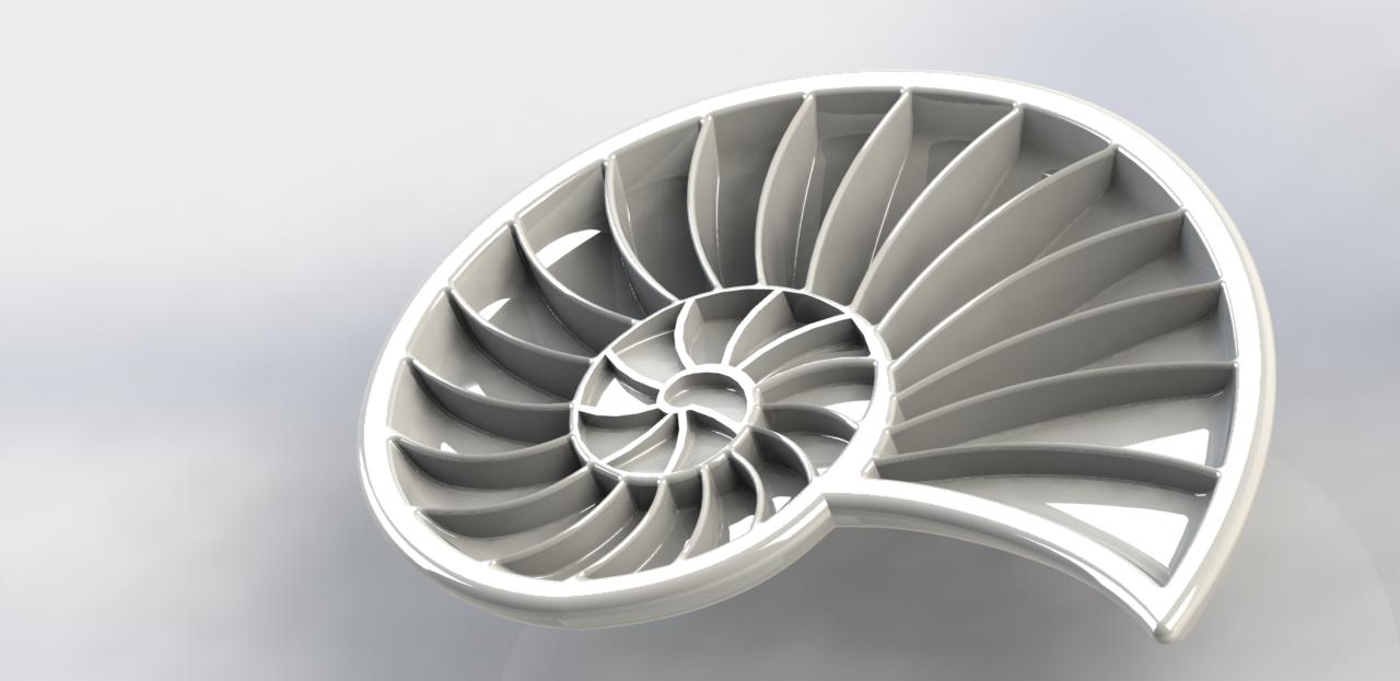 Filleted Seashell Render 2.JPG