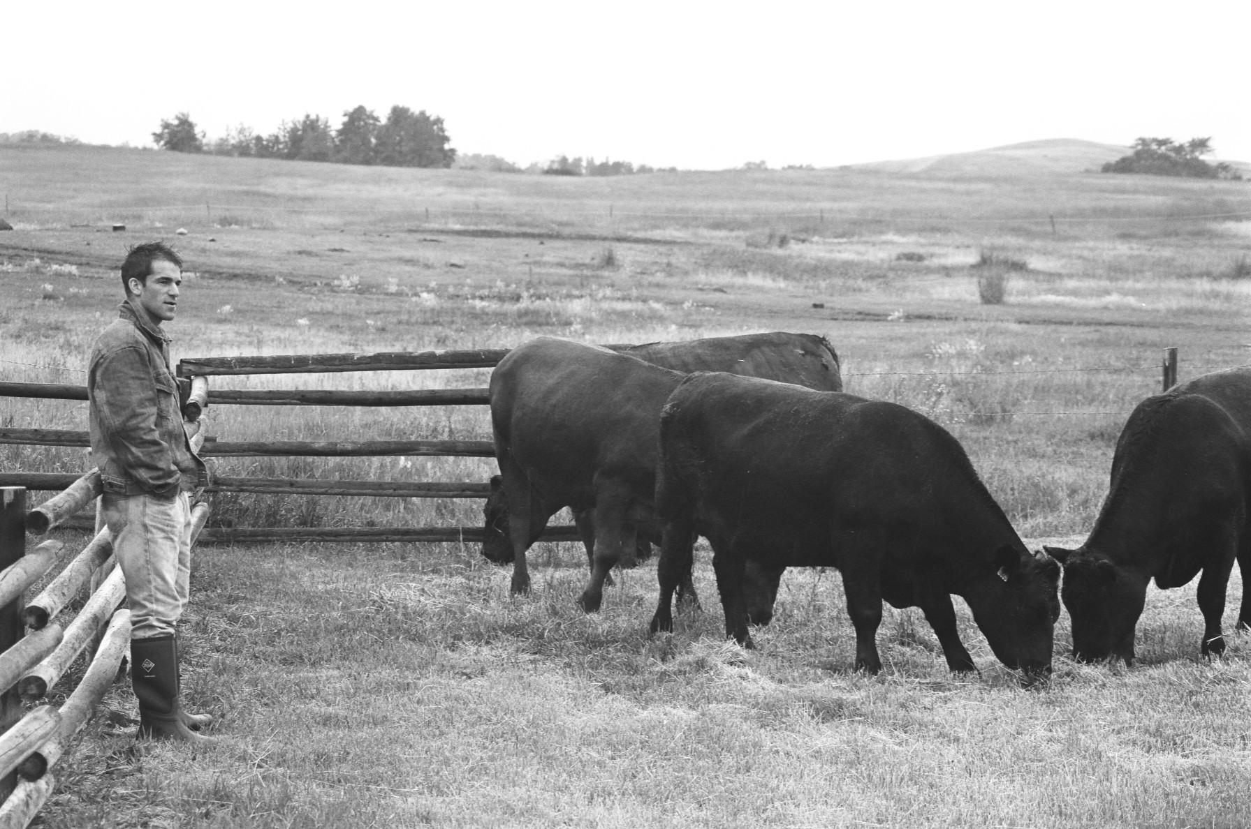 Montana Blacks 709.jpg