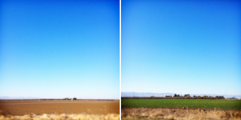 Farming California