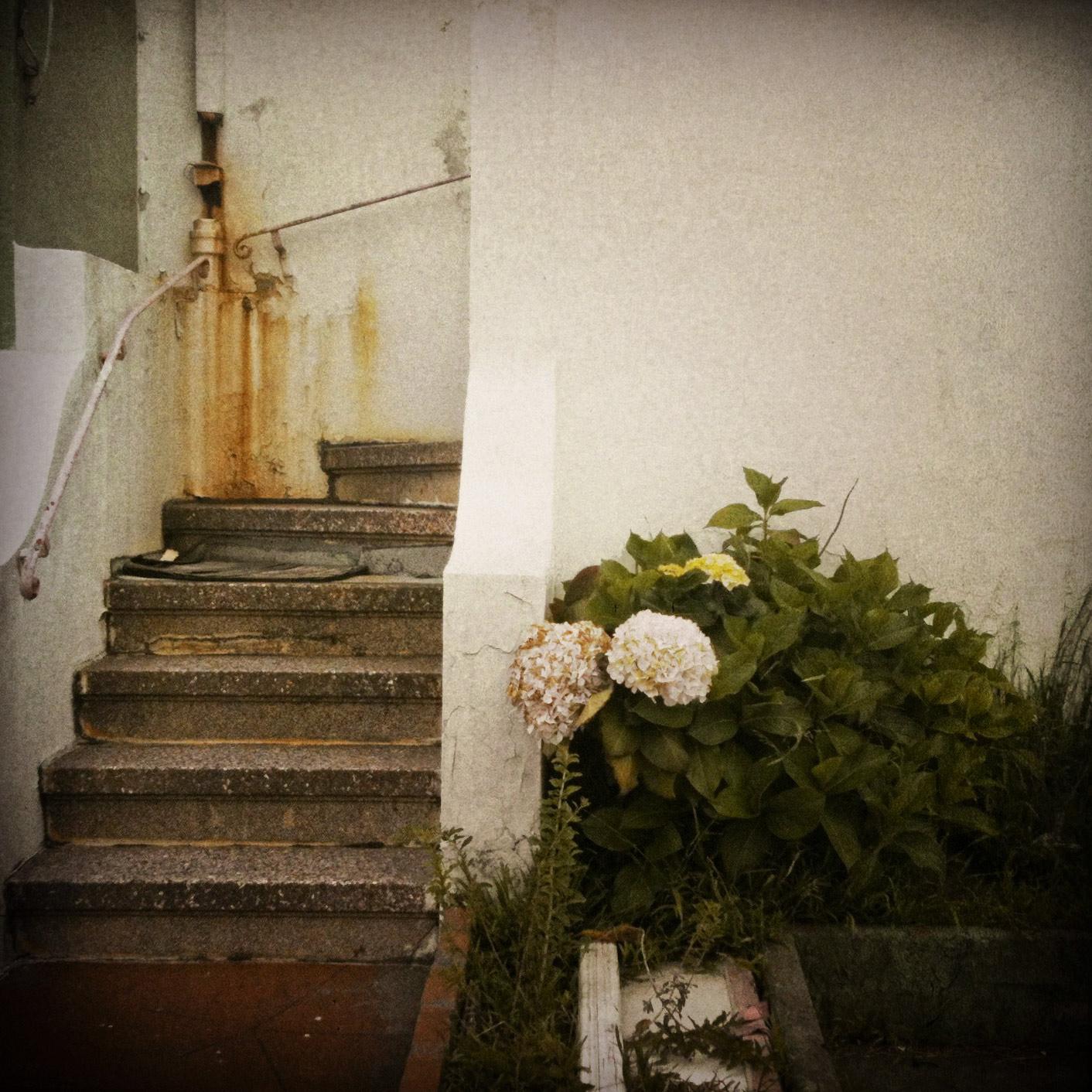 hush_stairs