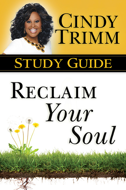 Reclaim Your Soul Study Guide