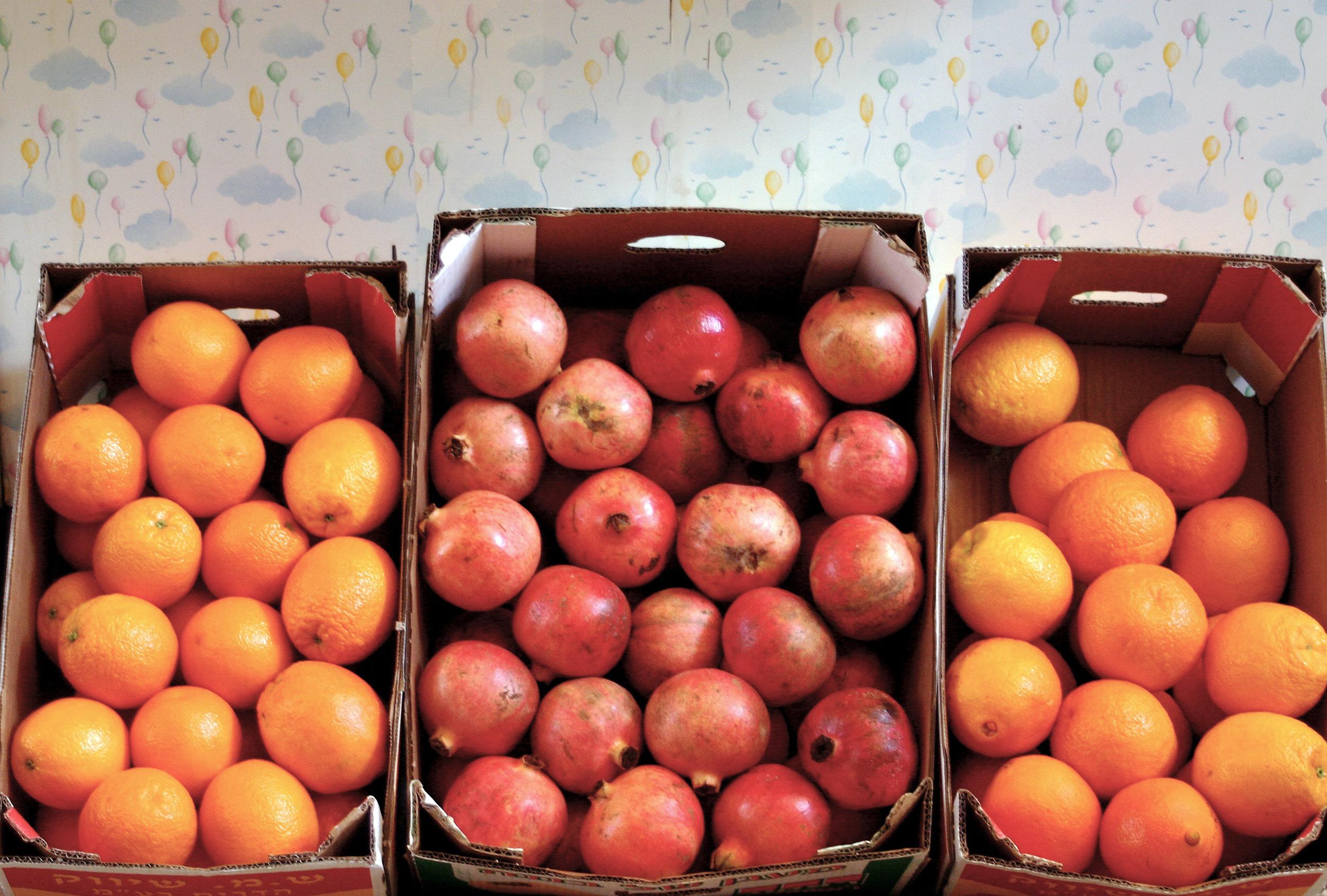 akko fruit.jpg