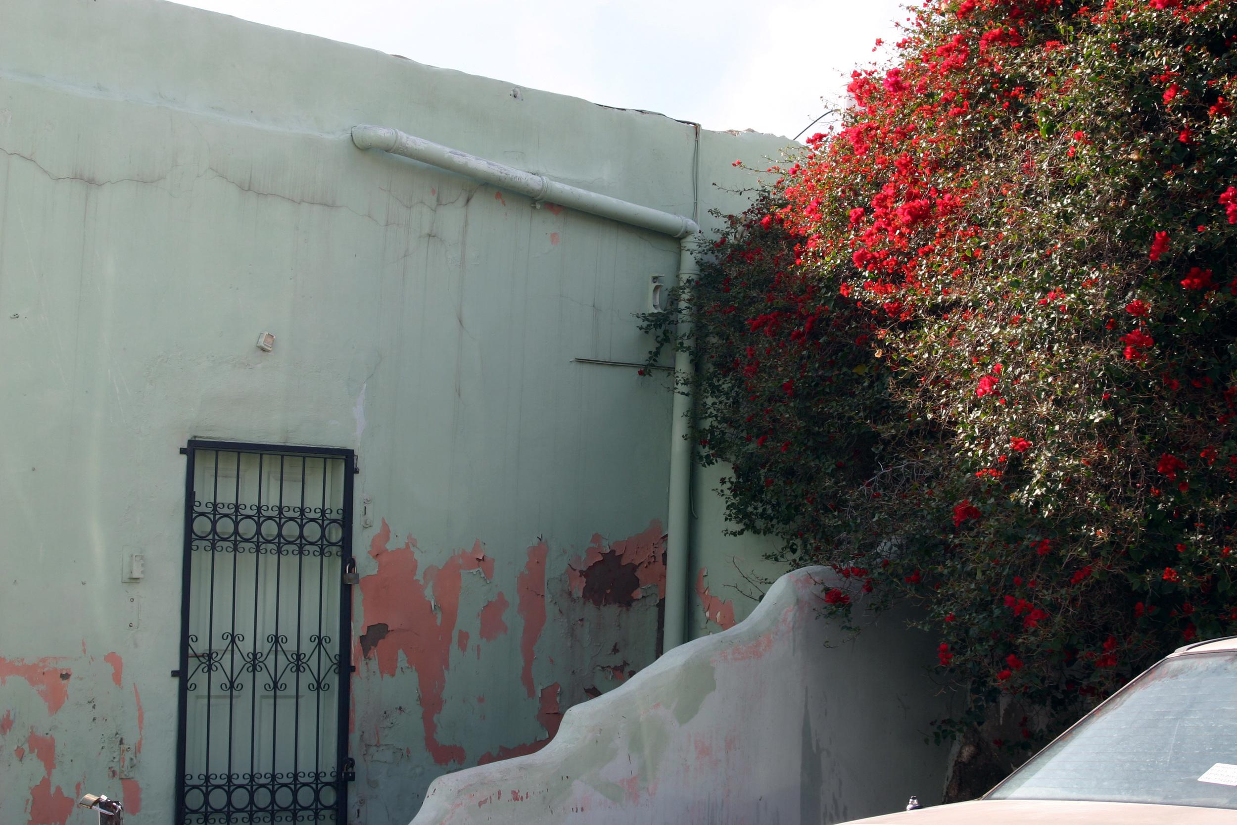 israel corner.jpg