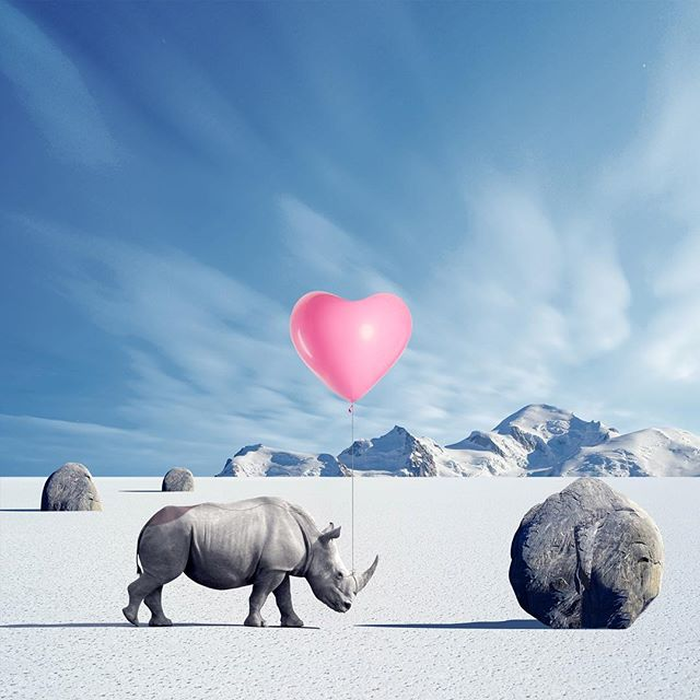'You are my rock'🗿💓🦏 #rsa_minimal #thegraphicspr0ject #awesome_surreal #art #conceptual #design #graphicdesign #artistsoninstagram #artist #edit_perfection #edits_oftheworld #theuniversalart #instamood #instagood #instagram #instacool #minimal #minimalism #minimal_perfection #creartmood #surrealart #arte #vsco #agameoftones #igmasters #ig_exquisite