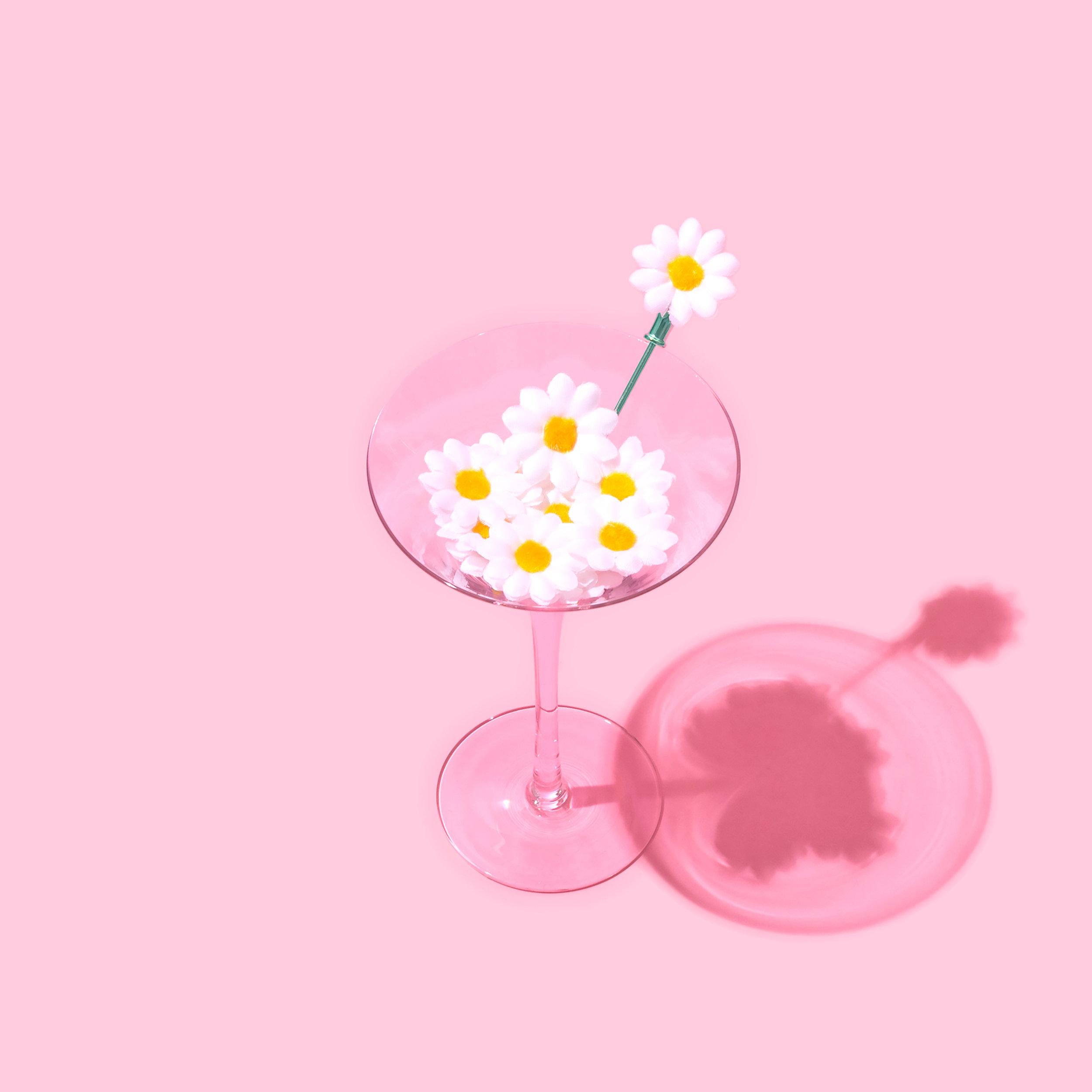 IG Daisy Tini 1D.jpg