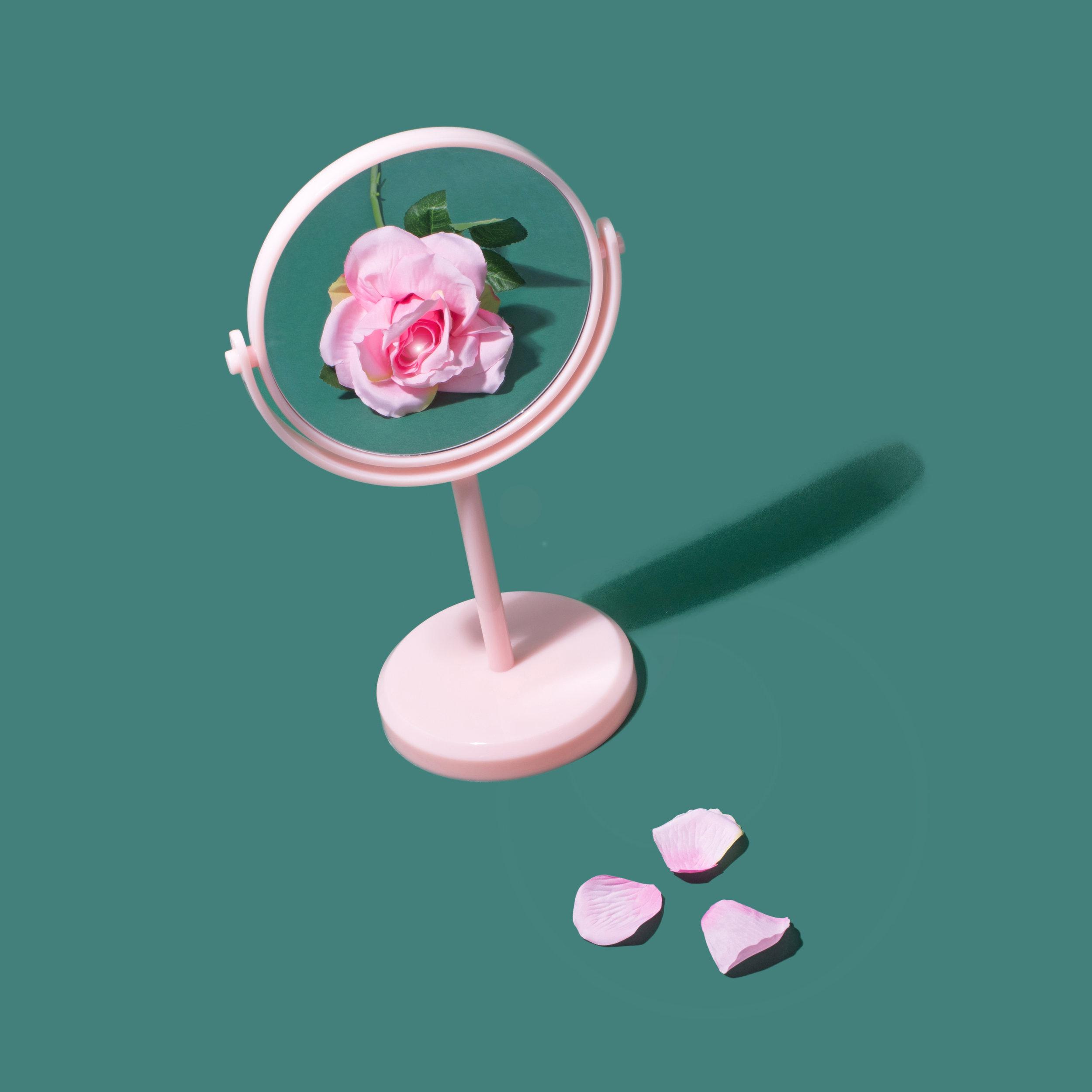IG Rose Mirror 2D.jpg