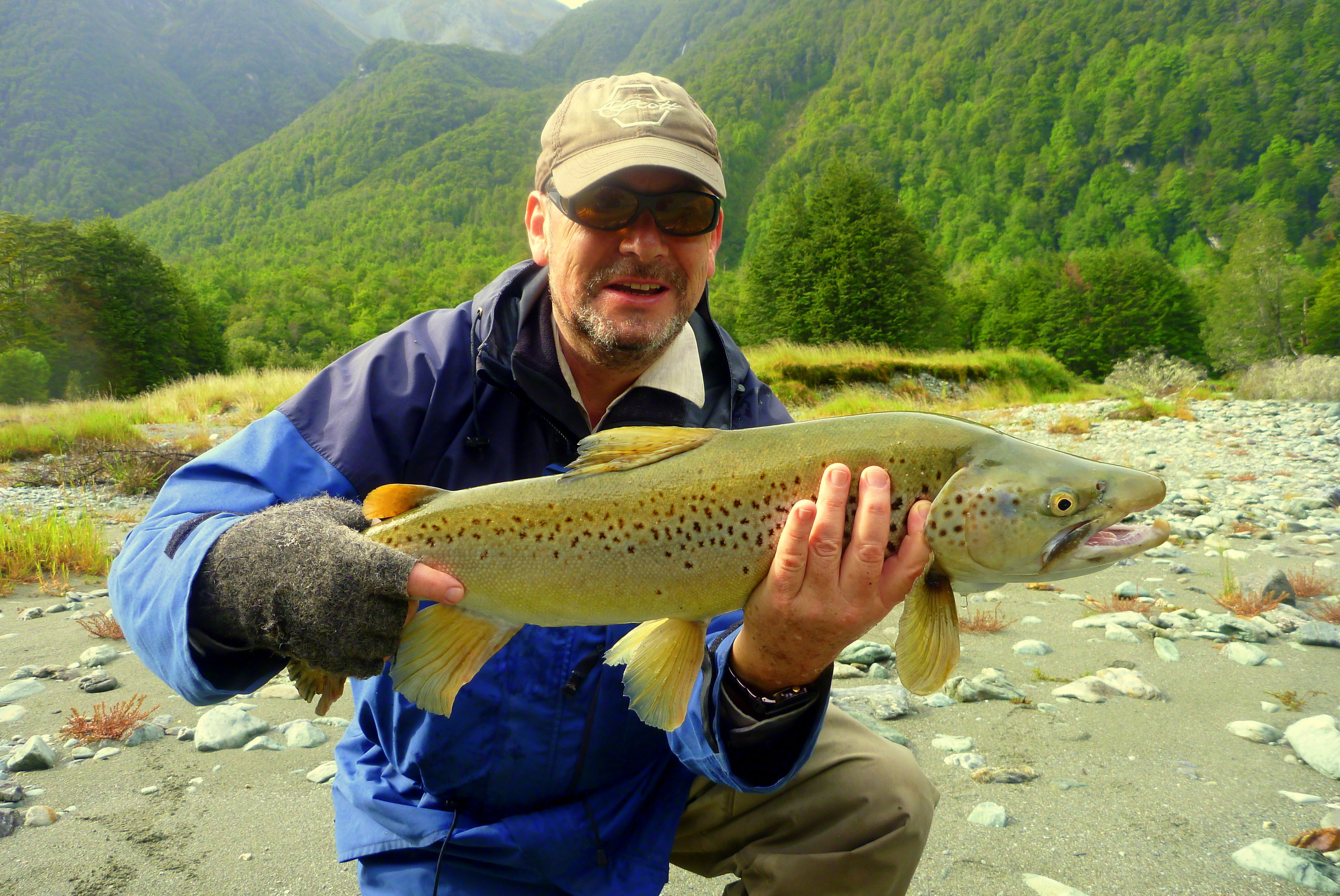South Westland trophy brown trout.