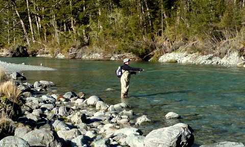 New Zealnd trout fishing experience