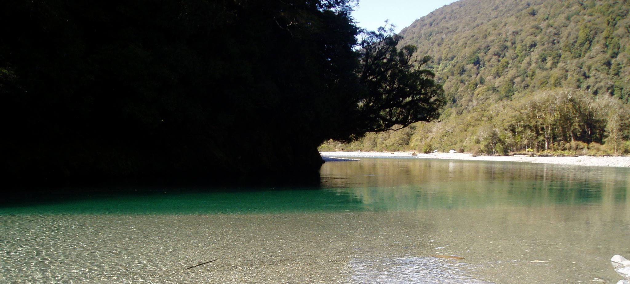 New Zealand fly fishing at it's best