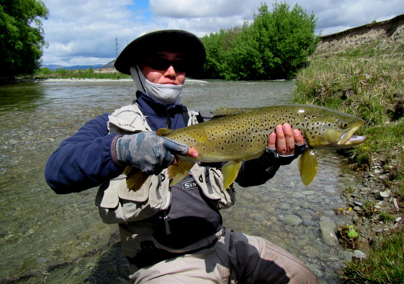 Trophy brown trout from the Twizel region of the South Island of New Zealand.